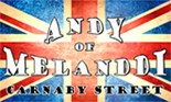 Melanddi Logo